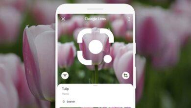 Photo of La nueva interfaz de Google Lens llega a todos los móviles con Assistant