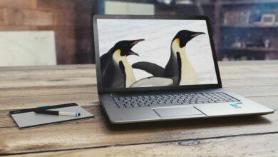 Photo of Cada vez hay más fabricantes grandes que venden portátiles con Linux preinstalado: estas son las principales propuestas