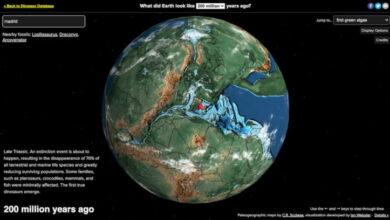 Photo of Ancient Earth, mapa virtual de la Tierra que te muestra como era un sitio hace millones de años