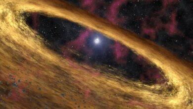 Photo of Ciencia: Este es el campo magnético más fuerte jamás conocido