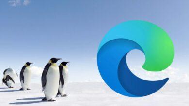 Photo of Microsoft Edge llegará a Linux en octubre