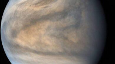 Photo of Conoce la fosfina, el material hallado en Venus que daría indicios de vida