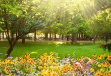 Photo of Ciencia: ¿cuándo realmente será el equinoccio de primavera?