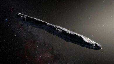 """Photo of Espacio: ¿Qué es un """"conejito de polvo""""? La nueva teoría acerca del origen de Oumuamua, el misterioso objeto interestelar"""