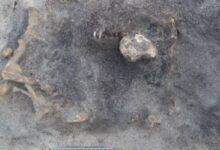 Photo of Este perrito de la Edad de Piedra acompañó a su amo hasta la muerte
