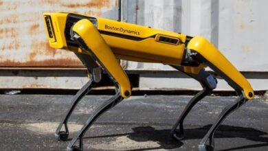 Photo of Video: Boston Dynamics y su perro robot causan terror en Canadá por un paseo nocturno