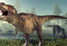 Photo of ¿Cuántos tipos de dinosaurios existieron? Estas son las distintas especies
