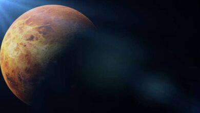 Photo of Venus: ¿Sabías que hay otros tres planetas con indicios de vida dentro de nuestro sistema solar?
