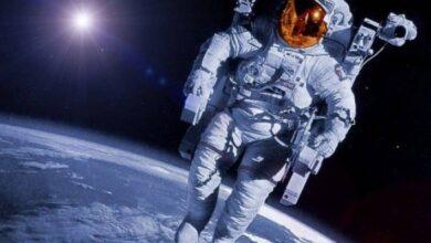 Photo of Científicos encontraron la forma de mitigar la perdida de músculos y masa ósea de quienes viajen al espacio