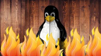 Photo of Los mejores cortafuegos para proteger tu equipo Linux