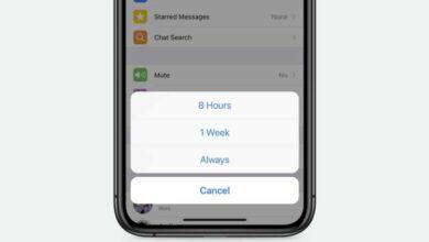 Photo of WhatsApp ya permite silenciar los chats para siempre
