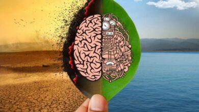 Photo of Cómo la inteligencia Artificial ayuda en la crisis climática mundial