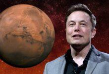Photo of Elon Musk: En 2024 SpaceX lanzará su primer vuelo a Marte