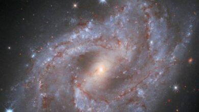 Photo of El Hubble captó la explosión de una estrella: brilló 5 billones de veces más que el Sol