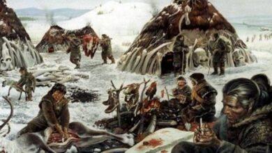 Photo of Estudio afirma que los neandertales y Homo erectus se extinguieron debido a cambios climáticos en la Tierra