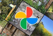 Photo of Cómo usar el editor rápido de Google Fotos para mejorar tus fotografías de forma sencilla