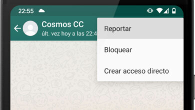 Photo of WhatsApp reenviará los mensajes más recientes al reportar a un contacto o grupo