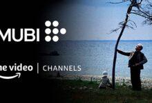 Photo of Más películas y series en Amazon Prime Video: llegan los nuevos canales bajo suscripción
