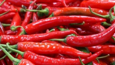 Photo of Nuevo estudio relacionó el consumo de chile o ajíes con el riesgo de muerte
