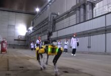 Photo of El robot perro de Boston Dynamics ayudará con la tragedia de Chernobyl