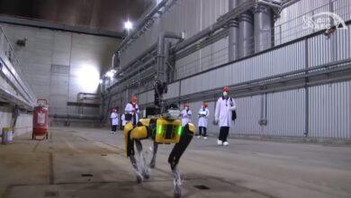 Photo of El robot perro de Boston Dynamics ayudará con la tragedia de Chernobyl