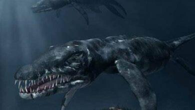 Photo of Dinosaurios: estos fueron los 10 más peligrosos del mundo