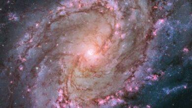 Photo of Conoce a ULLYSES, el más ambicioso proyecto del telescopio Hubble