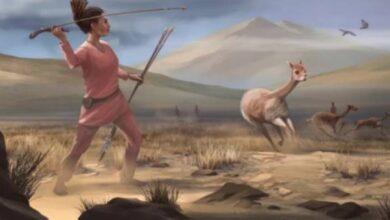 Photo of Encuentran restos de una mujer cazadora y sus armas: tienen 9 mil años