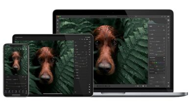 Photo of Adobe lanza una nueva versión de Lightroom compatible con Apple silicon y Windows 10 en ARM