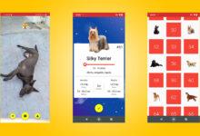 Photo of Todogs es una app para identificar y catalogar a los perros que te encuentras por la calle