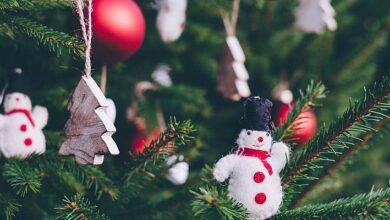 Photo of La ciencia puede ayudarte a cocinar un pavo perfecto para Navidad, aquí te decimos cómo