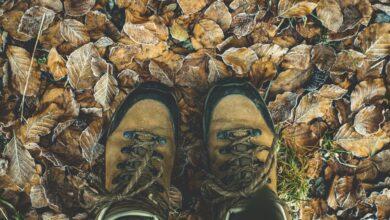 Photo of Chollos en tallas sueltas de botas Helly Hansen, Timberland o Columbia a la venta en Amazon