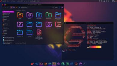 Photo of Garuda Linux es una nueva distro basada en Arch que viene con casi cualquier escritorio que se te ocurra como opción