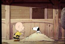 Photo of Esta semana en Apple TV+: estreno de 'Palmer', tráiler del Show de Snoopy y la entrada de Brie Larson