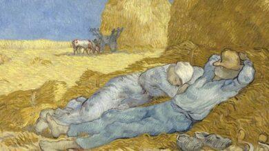 Photo of Ciencia: ¿por qué una siesta es necesaria para continuar con tu día?