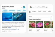Photo of Google «da un soplo de aire fresco» a las búsquedas móviles con su nuevo rediseño
