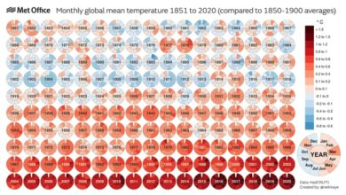 Photo of 2020 empata con 2016 como año más cálido desde que tenemos datos