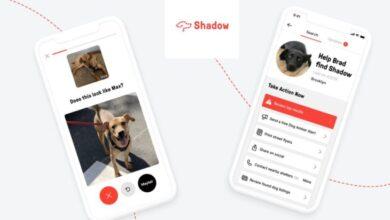 Photo of Encontrando perros desaparecidos usando Inteligencia Artificial