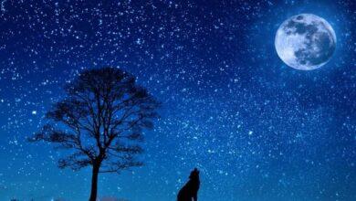 Photo of Luna de Lobo: ¿qué es exactamente lo que veremos y por qué se le llama así?