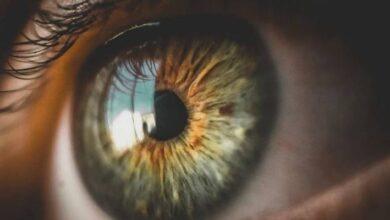 Photo of Científicos estudian un método en el que usan ojos de personas muertas para curar la ceguera