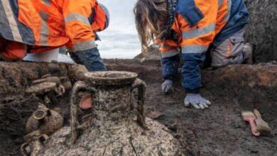 Photo of Encontraron un entierro de un niño y su perrito en la era romana: ¿por qué este hallazgo es excepcional?
