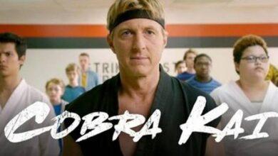 Photo of Cobra Kai: este es el oscuro pasado detrás del nombre del Dojo y de la serie