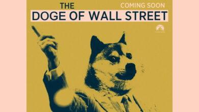 Photo of El 29% de los dogecoins está en manos de un único usuario… y Robinhood está entre los sospechosos
