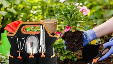 Photo of Ofertas en herramientas y accesorios de jardín con azuelas, cortacéspedes o jardineras en Amazon