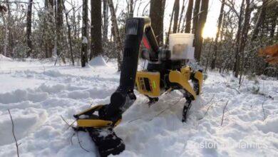 Photo of El nuevo brazo del perro robot de Boston Dynamics puede hacer todas estas cosas