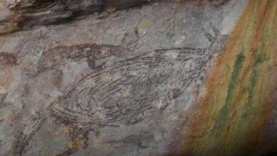 Photo of Un canguro de 17.500 años es la pintura rupestre más antigua en Australia