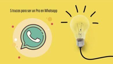 Photo of 5 trucos de Whatsapp para ser todo un experto