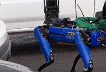Photo of Un perro robot patrulla en Nueva York: conoce a Digidog