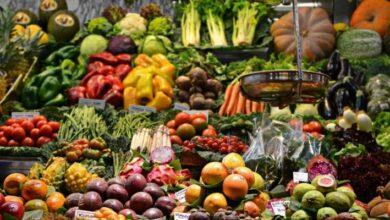 Photo of Las dietas a base de la combinación de diferentes plantas reducen el deterioro del cerebro y protege el corazón, sugiere estudio