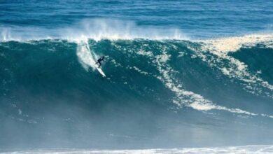 Photo of Punta de Lobos por Siempre: surf para defender al medio ambiente